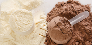 What is the Best Protein for Recovery